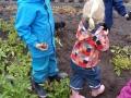 Kinder bei Kartoffelernte